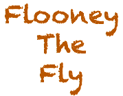 Flooney The Fly